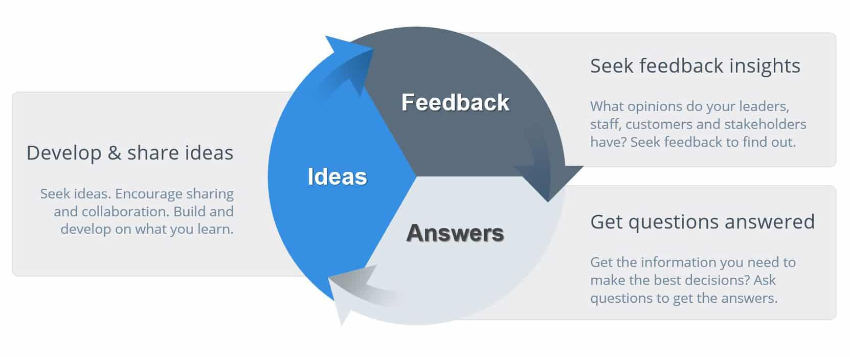 Feedback is Central to Everything